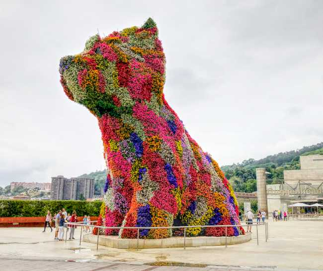 Puppy-Bilbao