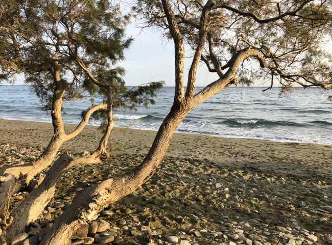Agios-Fokas-Tinos