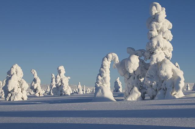 Finlandia-neve